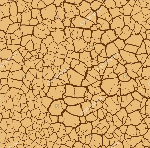 Cracked Soil Vector Texture