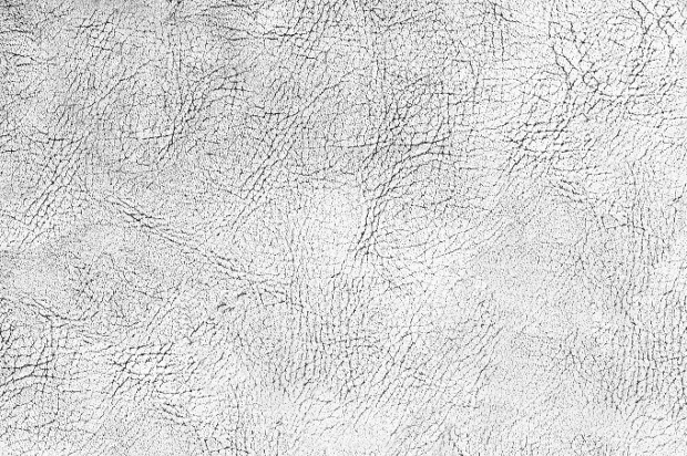 black and white cracked skin texture
