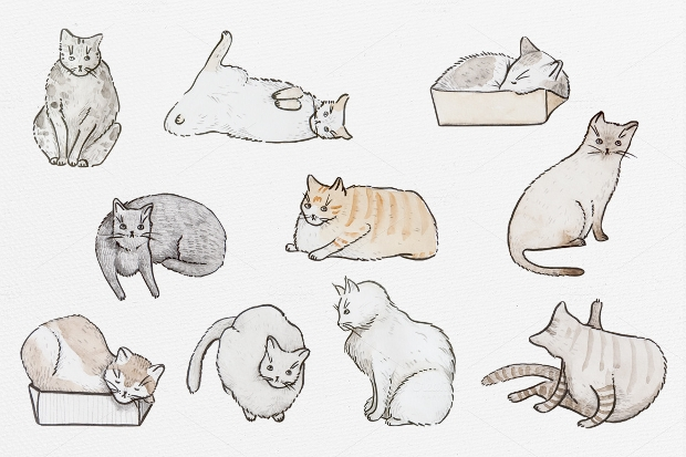 Watercolor Funny Cats Pattern