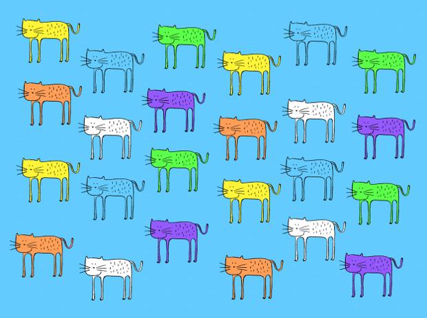 Color Cat Pattern Design