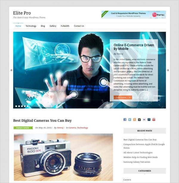 flat rich wordpress theme for business niche