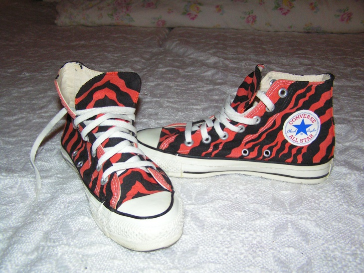 Red and Black Zebra Stripe Shoes