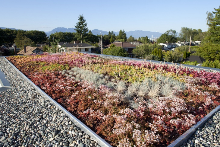 Contemporary roof garden idea