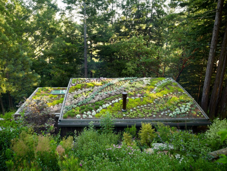 traditional roof garden design