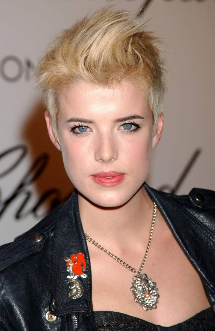 Agyness Deyn Punk Hairstyle