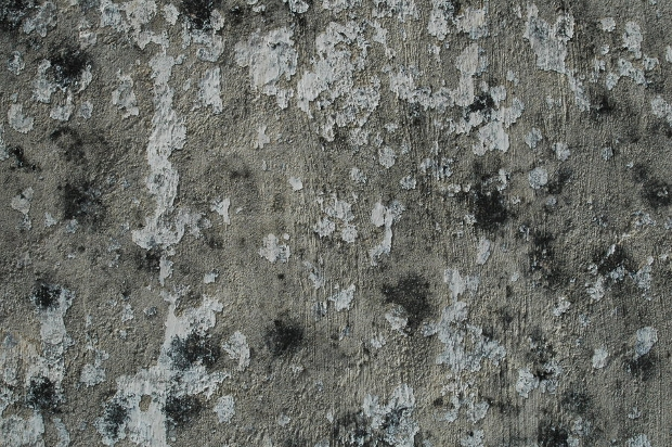 high resolution old stucco texture