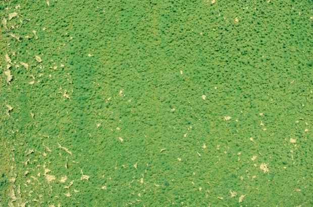 green stucco textures