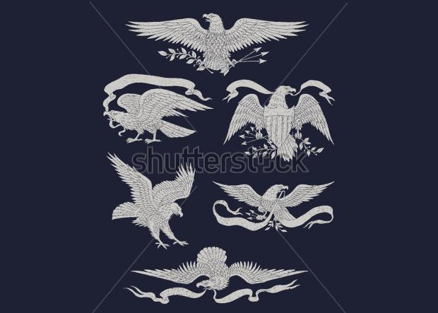 hand drawn vintage eagle vector set