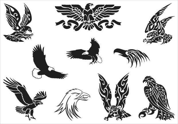 premium eagle vector pack