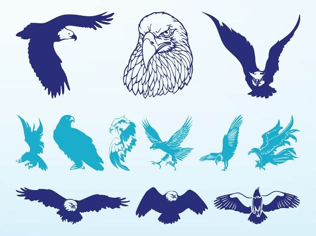 blue eagles vector set