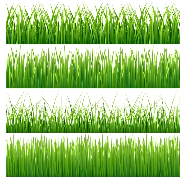 green grass vector design