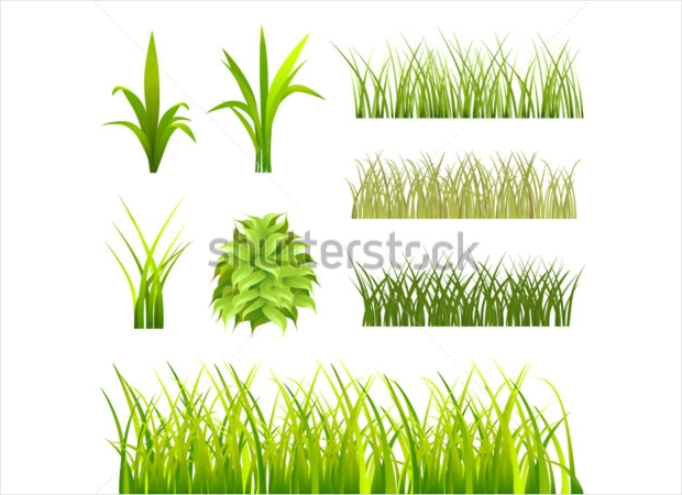 high quality grass vector