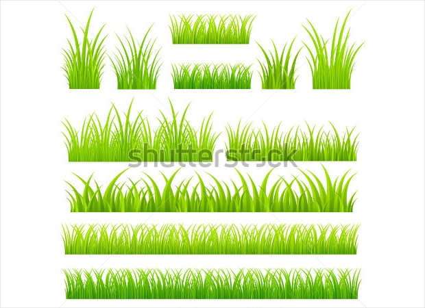 high resolution grass vector