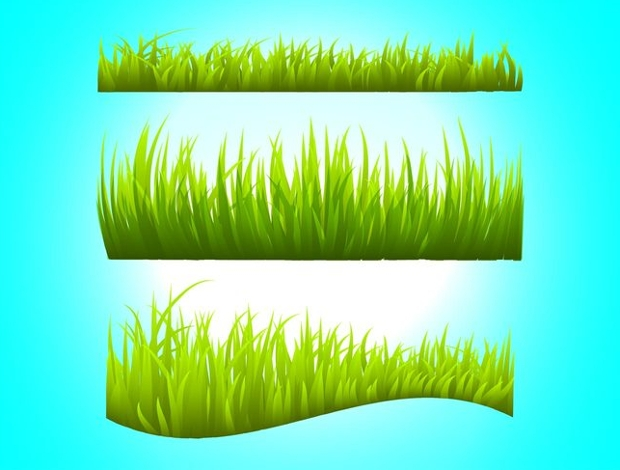 grass stems vector