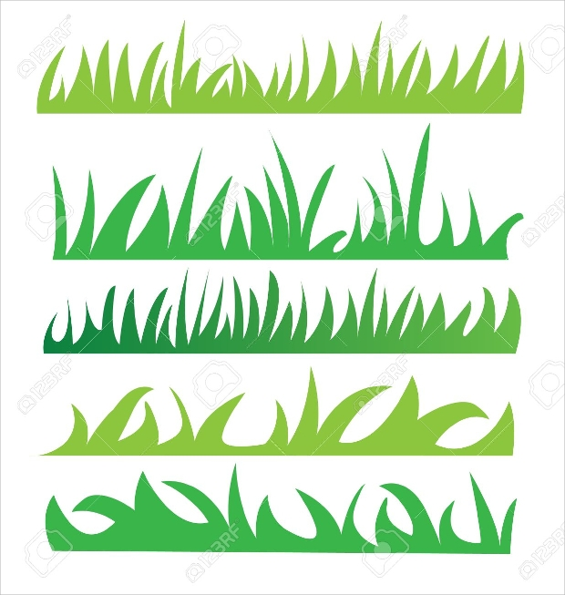 set of green grass vector illustration