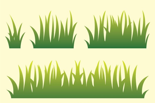 grass growth vector