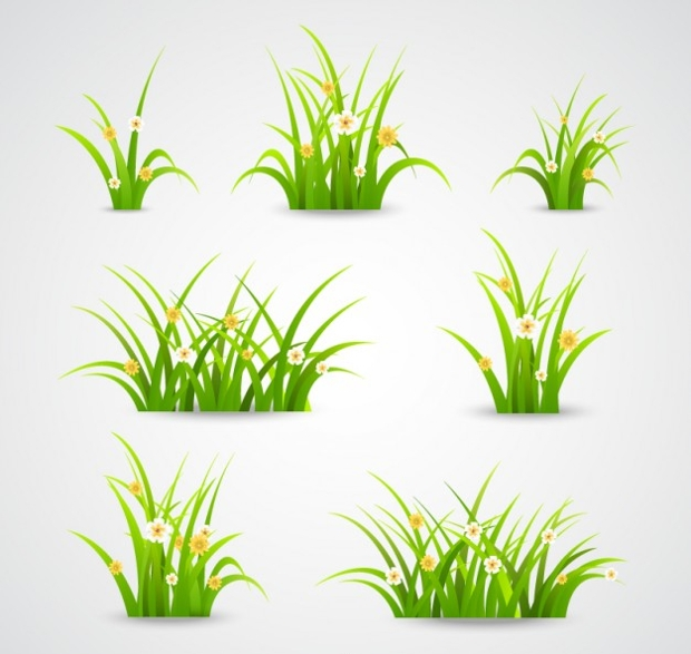 beautiful vector grass illustration