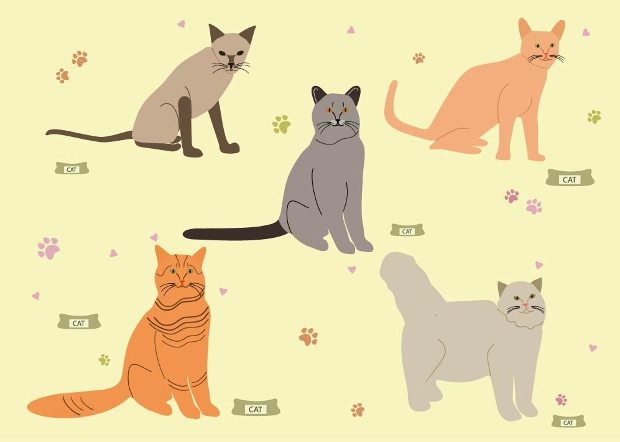 breed cat vector set