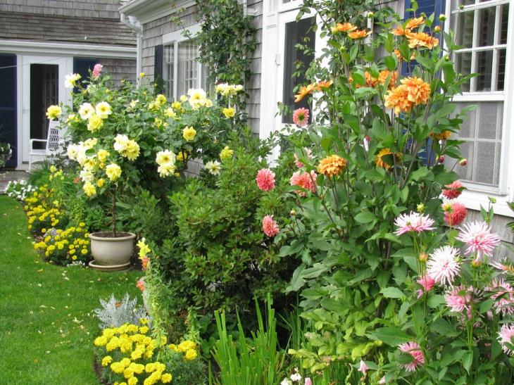 Peony Flower Garden Idea