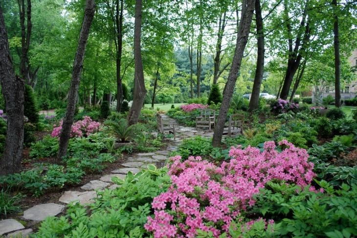 Pink Peony Garden Idea