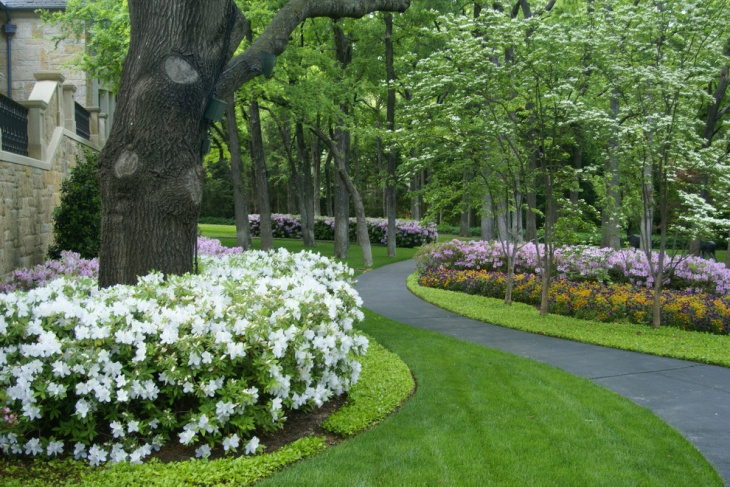 Small Shrub Garden Design