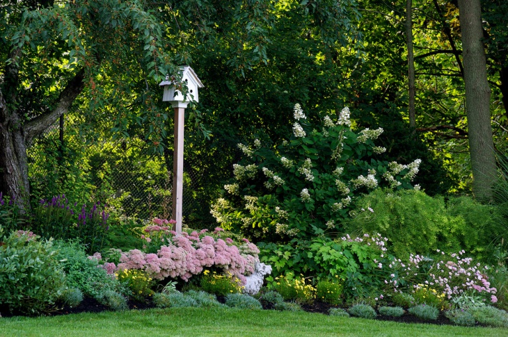 Simple Perennial Shrub Garden