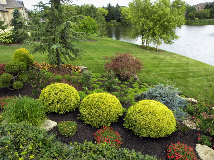 20 shrub garden designs ideas design trends premium for Garden design ideas with hedges