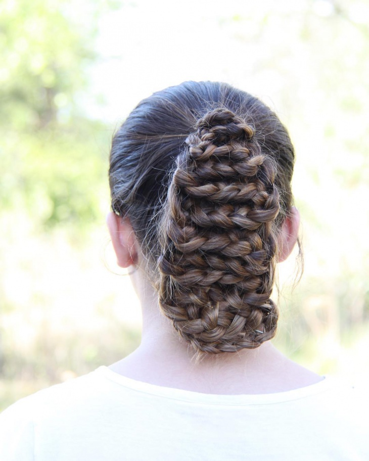 unique lace braided hairstyle