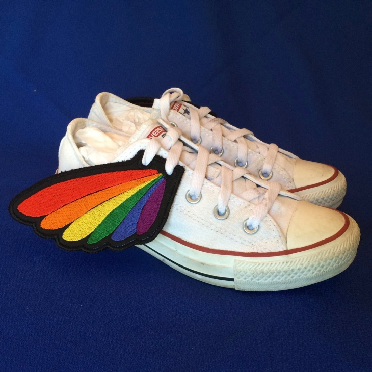 Rainbow Winged Shoes