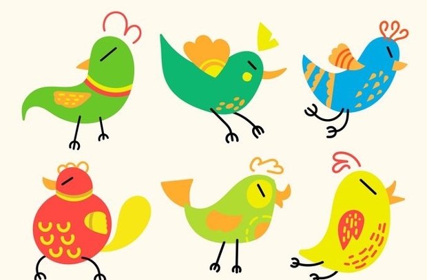 birds cartoon vector