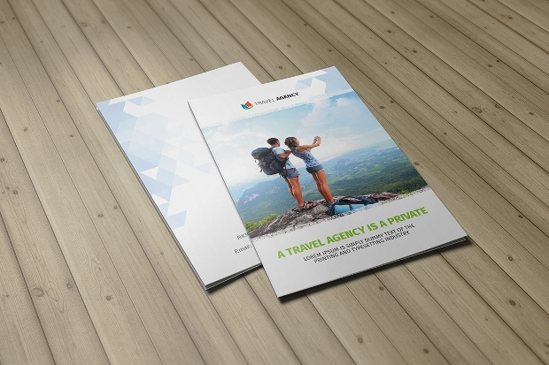 Holiday Travel Agency Bifold Brochure