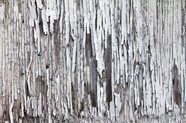 Net Wooden Door Design
