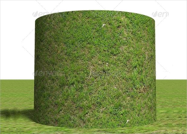 Tileable Plant Textures