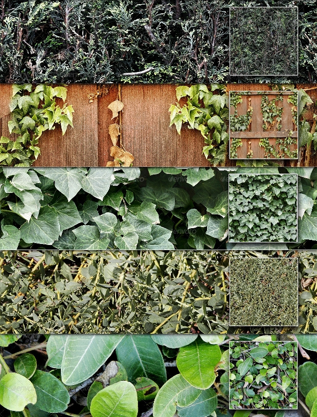 seamless plant and hedge textures