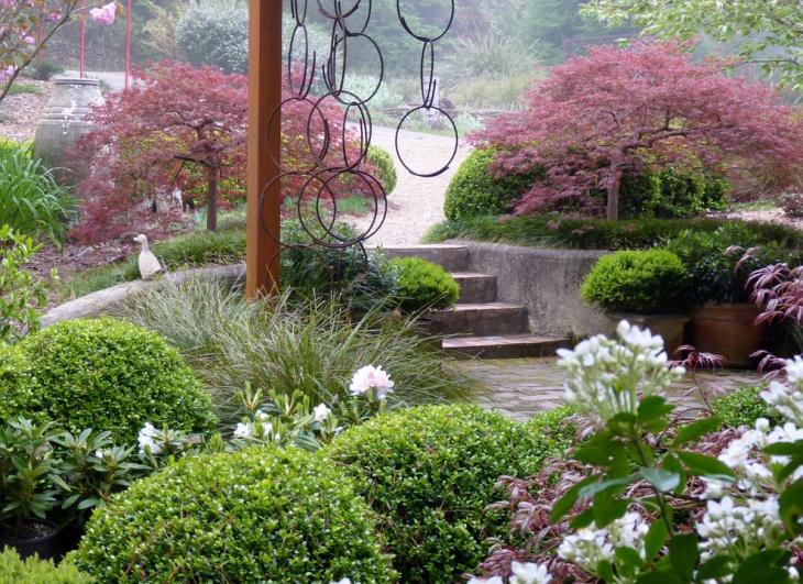 pink foliage garden plant