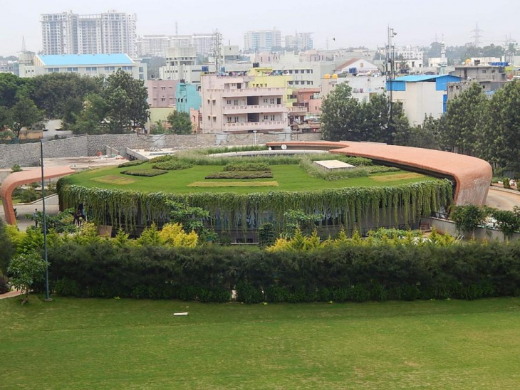 large foliage garden design