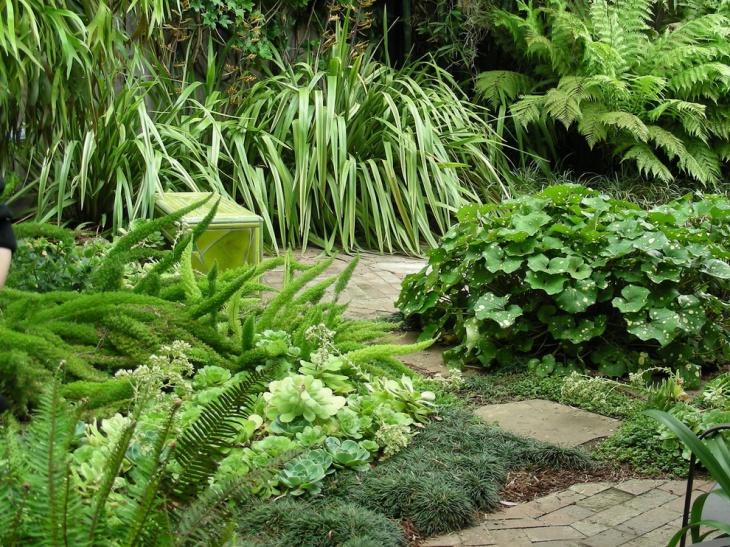 ornamental foliage garden