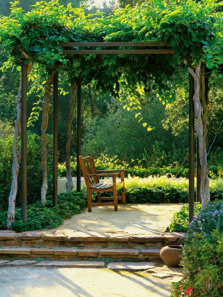 outdoor foliage garden