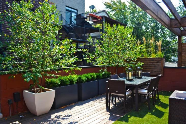 tropical foliage garden design