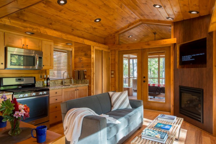 20+ Cabin Living Room Designs, ideas | Design Trends ...