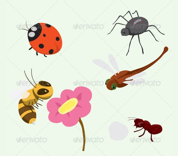 colorful insect vectors