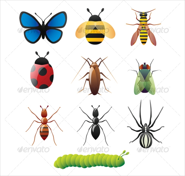 nature insect vectors
