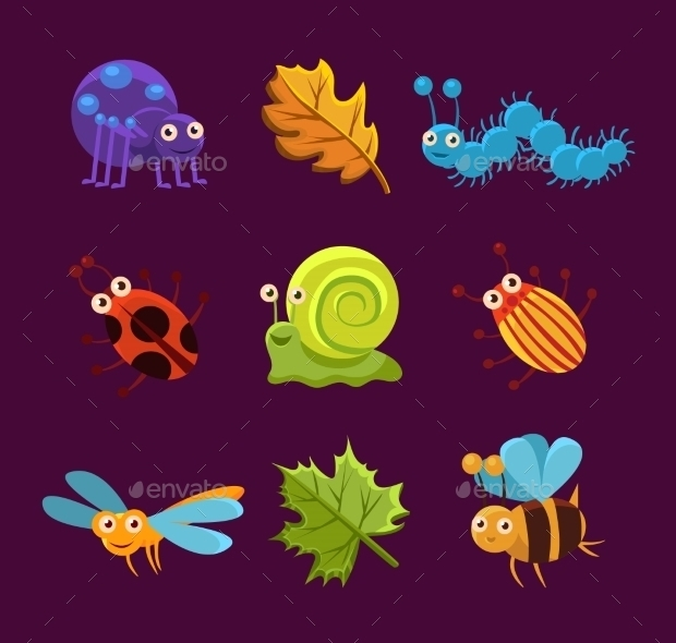 Insects and Leaves Vector Illustration