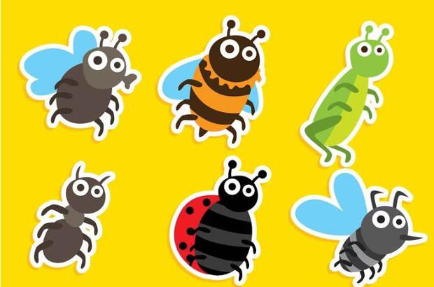 beetle vector illustration