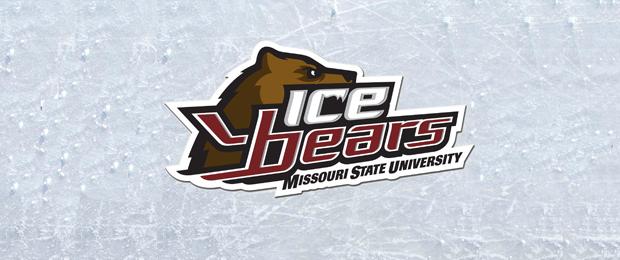 state university logo design