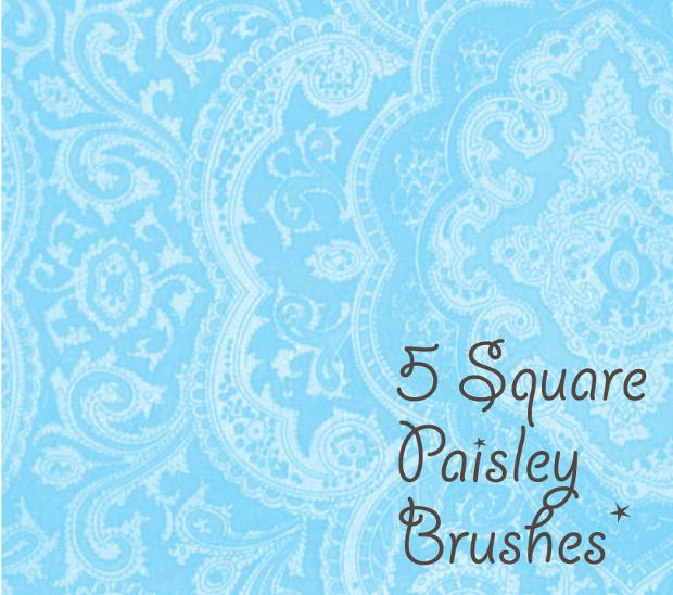 paisley square brushes