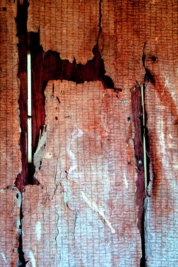 local ripped paper texture