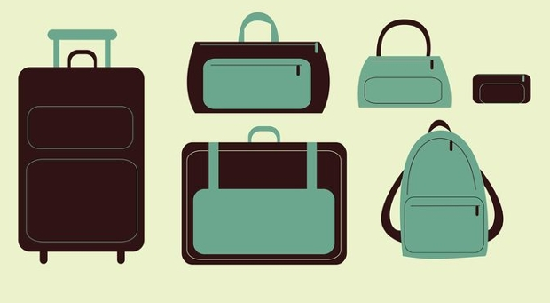 travel bags and suitcase vector
