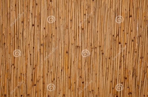 free rattan texture design