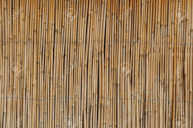 Old cane Weave Texture